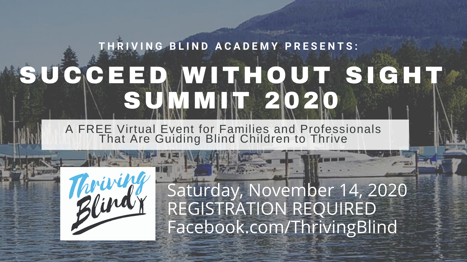 Succeed Without Sight Summit flyer